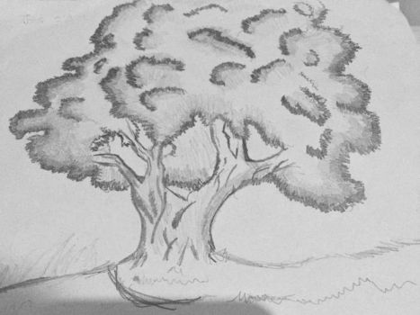 Tree by DrawingLover626