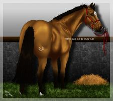 The Horse With The Golden Coat by DamianMcGintyFan222