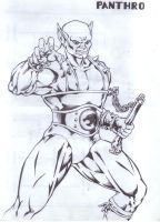 panthro by Capocyan-Arvin