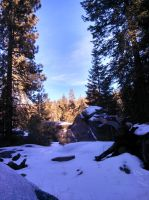 HDR Snowy forest by ThatZACHARY117