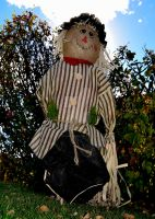 Notso Scarecrow by ToysoldierThor