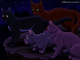 Heatherstar, Hailstar, Cedarstar and Pinestar by Vialir