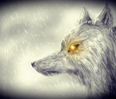 Snow wolf by SweetDeathWolf
