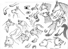 2011 Practice Sheet by DragonHeartLuver