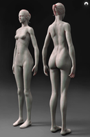 Female Anatomy FREE Download by fumanshooh