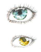 eye study by ZakariasEatWorld