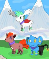 PMD3-Team Fire Storm by StartheDarkrai