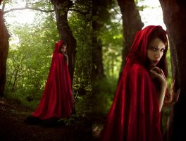 Little Red Riding Hood Dittico by RahLuna