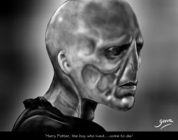 Lord Voldemort III by Giova94
