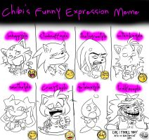 Chibi's Expressions Meme by KACItheCAT