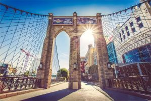 Las Vegas - Brooklyn Bridge by Torsten-Hufsky