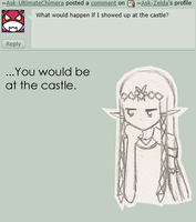 Ask Zelda 24 by Ask-Zelda