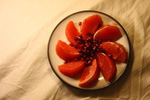 Grapefruit and Pomegranate by froggynaan