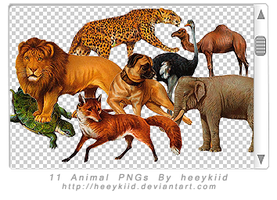11 Animal PNGs By heeykiid by heeykiid