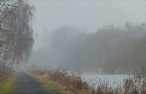 Misty morning along the Scarpe river by April-Mo