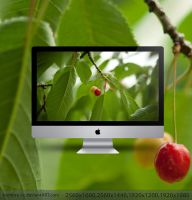 Cherry wallpaper by hombre-cz