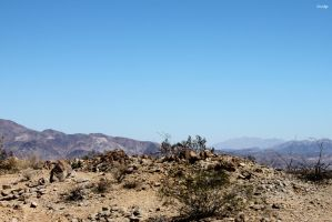 Joshua Tree National Park by surlana