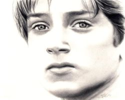 LOTR - Elijah Wood by rebekahlynn