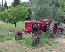 Tracteur by Flore-stock