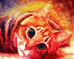 Watercolor Cat by Meorow