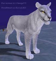 New fur for felines by OmegaLioness