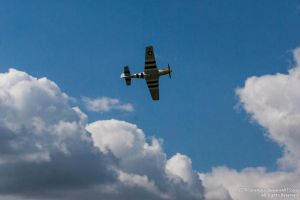 D-Day P-51 Mustang 2 by TPJerematic