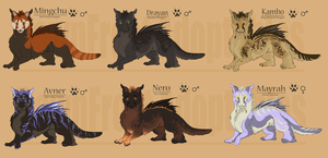 dragon designs by DawnFrost
