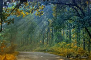 :: Ray of Light :: by diensilver