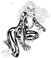 The Black Cat by SpiderGuile
