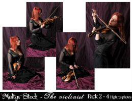The Violinist - Pack 2 by Meltys-stock