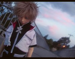Roxas - Counting the Days by ClamWings