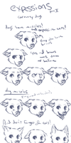 FP Tutorial - expressions II by AnneDyari