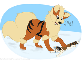 Arcanine uses Tag! It's super effective. by tar101