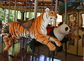 Hogle Zoo 10 - Carousel by Falln-Stock