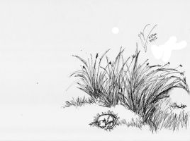 sketch ink grass rock kitty by Draconica5