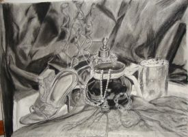 Charcoal Still Life by silverz777