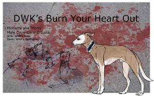 DWK's Burn Your Heart Out by capnquills
