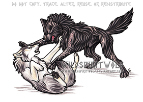 Triple Eight Wolf Fight by WildSpiritWolf