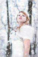Snow Princess 8 by stargirlphotography