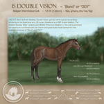 IS Double Vision - yearling reference by MistyofSunrise