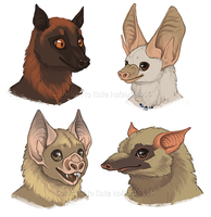 Bat Faces - Furries Furever Art Book by KatieHofgard