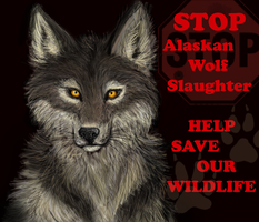 STOP Alaskan Wolf Slaughter by Kinky-Slingy