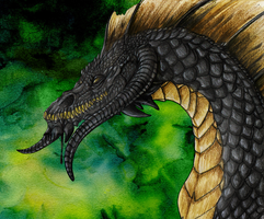 Black DnD Dragon by FlyingFire