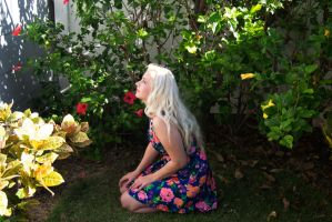 Hawaii Flower Stock 2 by Tris-Marie