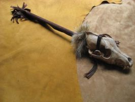 Coyote jaw rattle 1 by lupagreenwolf