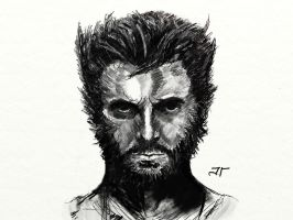 Wolverine sketch by Jaimus