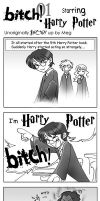 I'm Harry Potter BITCH by foxfur
