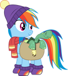 [MLP] Rainbow Dash Winter Outfit by AnonimowyBrony