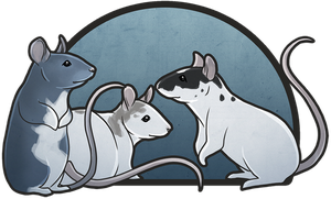 Ratties by Hymnsie
