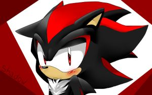 Shadow the Hedgehog by shadow-teardrop